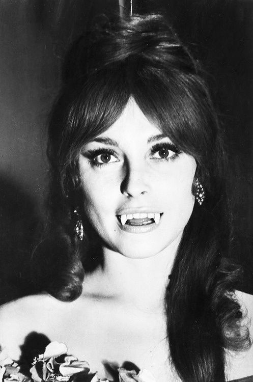 Sharon-Tate-Fearless-Vampire-Killers-1967